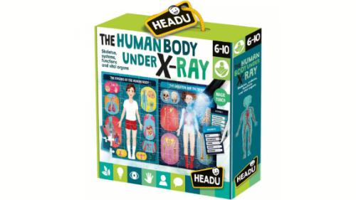Vendosni pjesët në vendet e duhua të këtij puzzlI dhe studioni imazhin e krijuar prej tij për të parë  sesa I veçantë është trupi I njeriut.Me anë të vëmendjes dhe përqëndrimit fëmija mund të mësojë rreth trupit dhe funksioneve të tij,aparatet dhe sistemet jetësore të trupit tonë