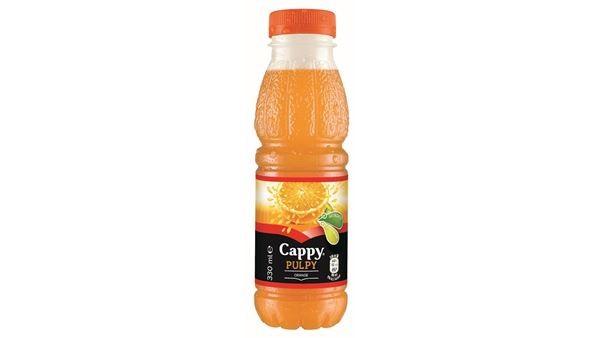 Cappy puply