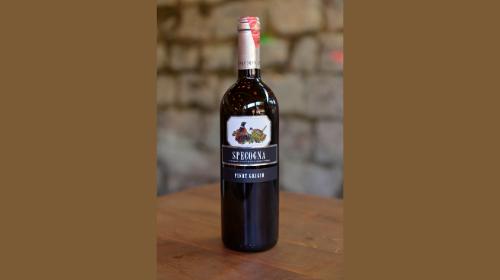 Pinot Grigio Friuli Specogna